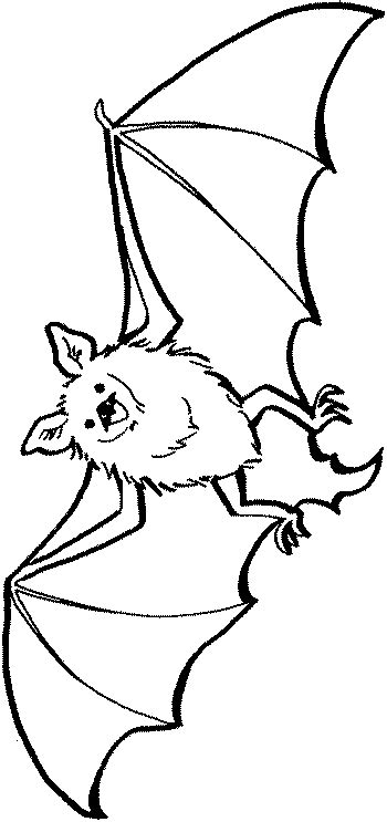 minecraft bat coloring page free coloring pages of baby bat