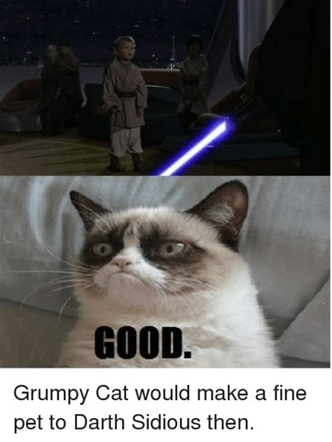 Star Wars Cat Meme - 25 best memes about grumpy cat and star wars grumpy cat