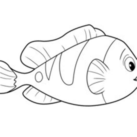 Fish : Coloring pages, Drawing for Kids, Reading