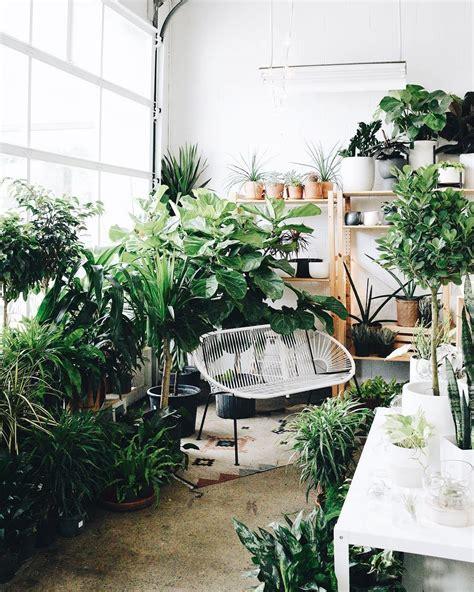 cutest plant shops   world