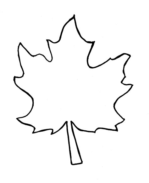 printable leaves outline leaf outline clipart best