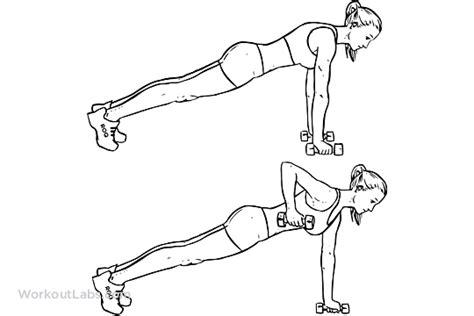 Bench Dumbbell Exercises Renegade Alternating Plank Commando Rows Workoutlabs