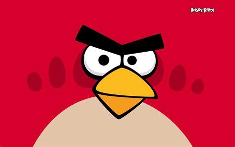 angry bid angry birds wallpaper 28211603 fanpop