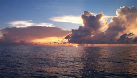 boat hire sarasota sarasota florida fishing charters rodbender fishing