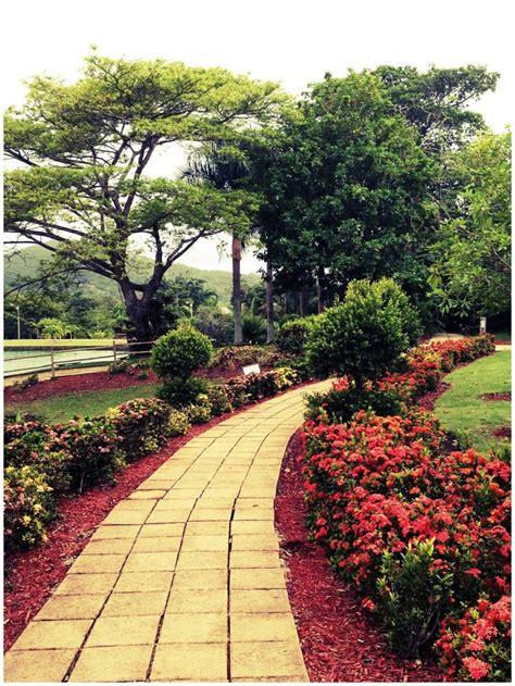 Caguas Botanical Garden Botanic Garden Caguas Enchanted Island Discover Pu