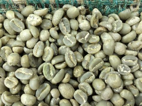 Biji Kopi Hijau jual biji kopi hijau harga murah jakarta oleh pt terano global mandiri