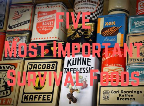 best survival food best survival foods top 5 eats to on when