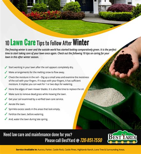 winter lawn care winter lawn care tips design decoration