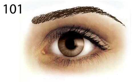 ibrowsers dark removable tattoo eyebrow styles