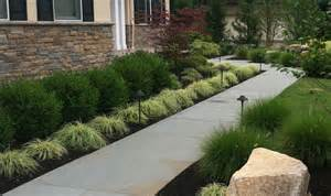 Concrete walkways designs for homes with green lush vegetation also