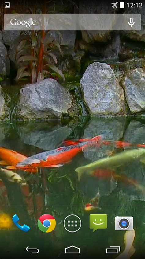 koi live wallpaper full version 1 9 koi pond video live wallpaper android apps on google play