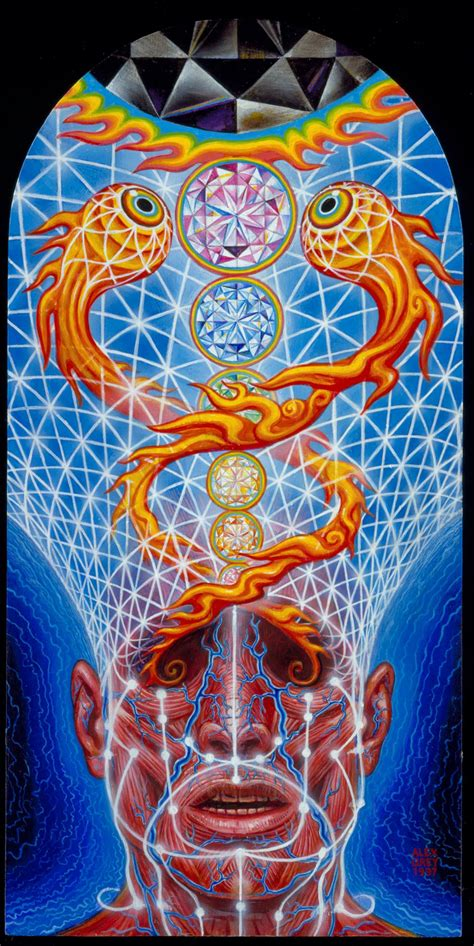 by alex grey art by alex grey pinterest