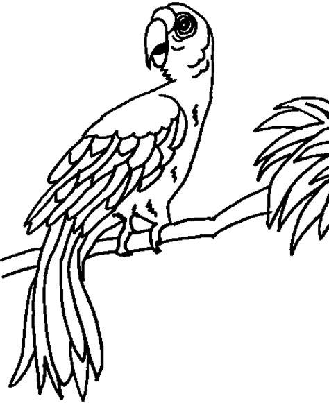 http www ahiva info colorear el arte de ense 241 ar colorear cotorra