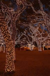christmas lights in johnson city texas outdoor