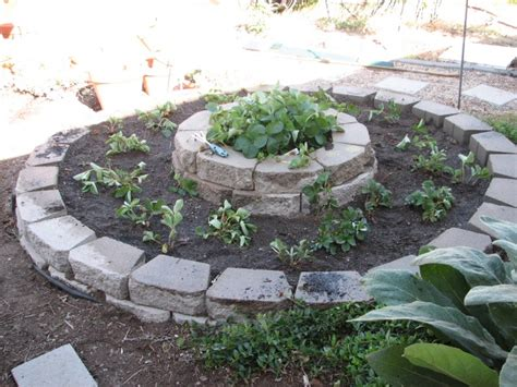 strawberry bed ideas 17 best images about strawberry beds on pinterest