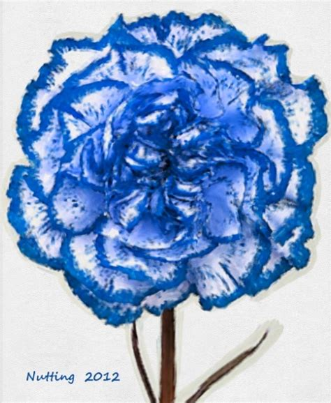 Blue Carnations 25 Best Ideas About Blue Carnations On Pinterest Carnation Centerpieces Pink Carnations And