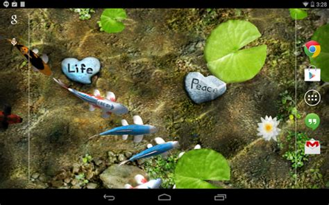 koi live wallpaper full version for android koi live wallpaper fully interactive water free apps