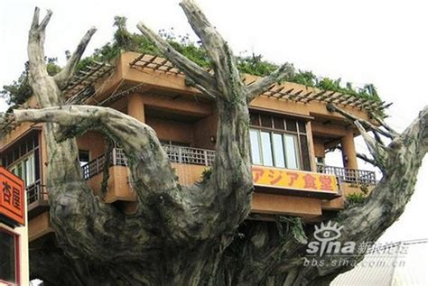 crazy houses 20 strange weird crazy and creative houses ever spicytec