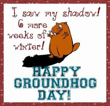 groundhog day quotes booties 103 best future quotes images on dieren