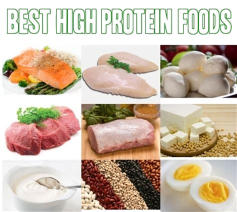 The Best Diet Foods High In Protein by The List Of The Top 10 High Protein Foods Revealed