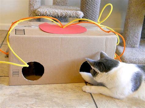 creare ladari fai da te giochini faidate per gatti idee