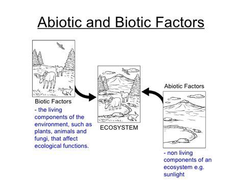 Biotic Abiotic Factors Worksheet by Ecology Biotic And Abiotic Factors Worksheet