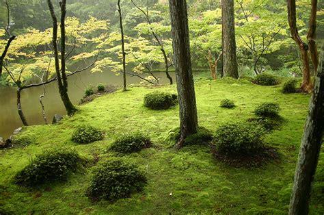 Moss Garden Kyoto by The 25 Most Inspiring Japanese Zen Gardens