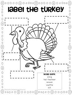 parts of a turkey coloring page free label the turkey printables free homeschool deals