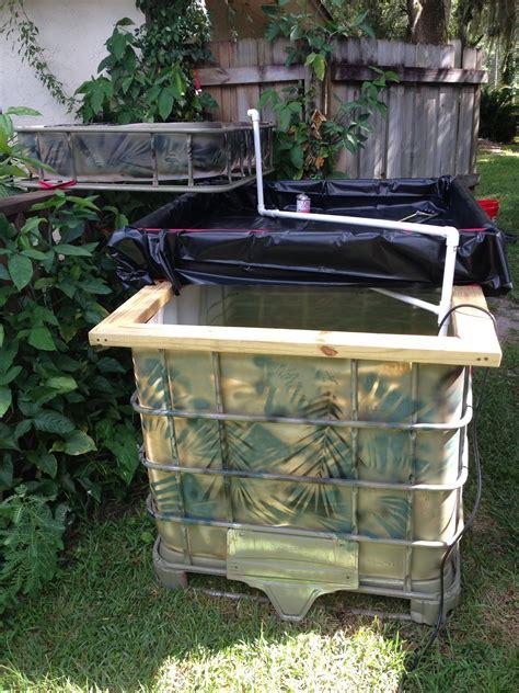 backyard aquaponics system our backyard aquaponic garden aquaponics pinterest