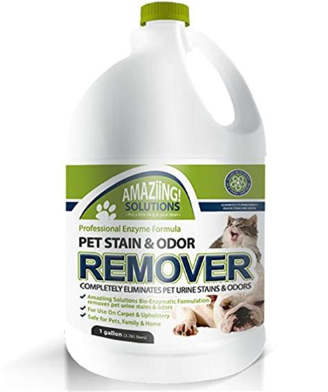 shopping for the best pet stain remover and odor