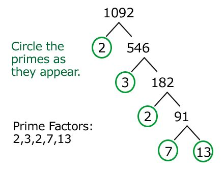 factors in the of twenty two hundred classic reprint books factor tree 1092 gif