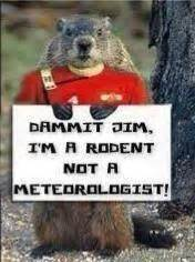 groundhog day quotes radio bartcop s most recent rants political humor and commentary