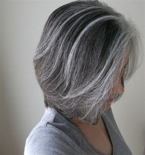 silver white hair with brown lowlights 60 best brunette and silver images on pinterest white