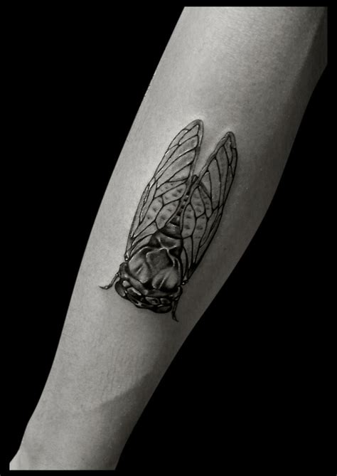 cicada tattoo meaning 1000 ideas about bodysuit tattoos on baby