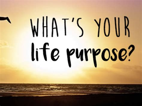 biography purpose life purpose chicks with spiritual gifts