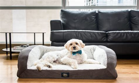 best pet beds best dog beds for small dogs overstock com