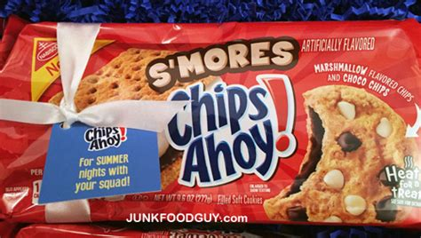 Chips Ahoy Smores Cookie review new s mores chips ahoy more go griping junk food your daily snack of