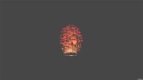 forest minimalist hd artist  wallpapers images