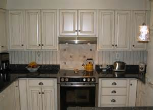 Replacement Doors For Kitchen Cabinets Costs by Interior Designs Kitchen Cabinet Door Replacement