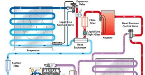 kolpak amc46 100 defrost timer wiring diagram amc
