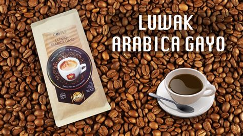 Kopi Gayo Luwak Liar Arabica Roasted 200gr genuine indonesia coffee luwak liar 11street malaysia roast ground coffee