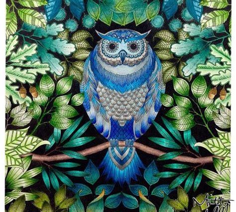 secret garden coloring book owl best 25 secret garden coloring book ideas on