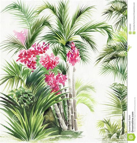 palm bamboo oasis stock illustration image of chinese