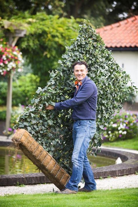 Garten Hecke by 1000 Ideas About Sichtschutz Terrasse On