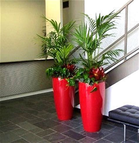 awesome Home Office Space Ideas #2: Creative-Interior-Plantscapes-Interior-Plants-7.jpg