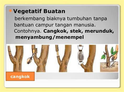 pert  reproduksi tumbuhan