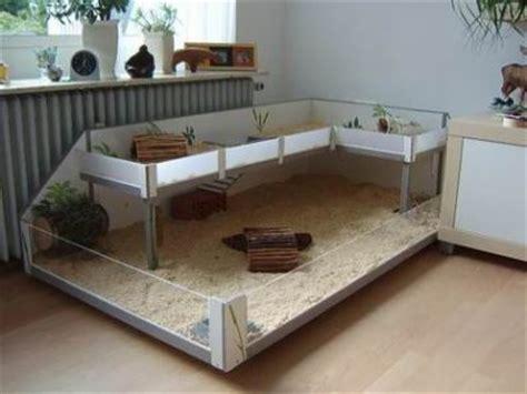 meerschweinchen stall bauen meerschweinchenk 228 fig selber bauen meerschweinchen haltung