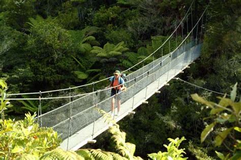 swing bridge nz swing bridge abel tasman national park protected areas