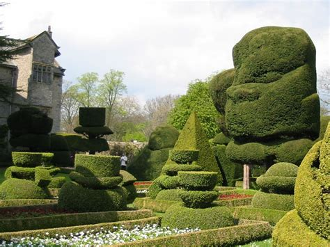 1000 images about levens hall garden on pinterest gardens lake district and taxus baccata