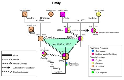 exle of genogram social visualizations genograms and